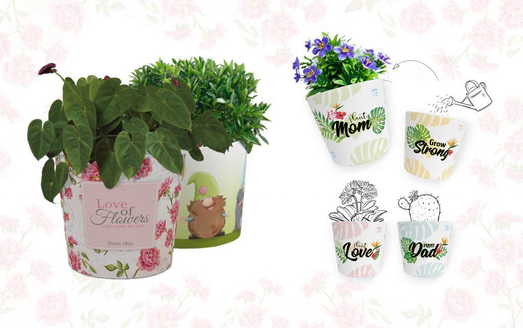 Blumentopf Desingns mit tropischen Blättern und Spruch, Rosen und Wichteln